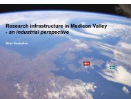 Research infrastructure in Medicon Valley - an industrial ...