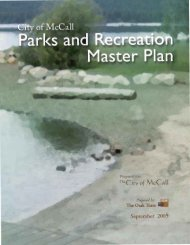 McCall Parks and Recreation Master Plan - The City of McCall