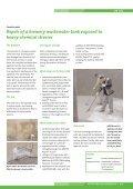 WATERPROOFING REPORT - Page 5