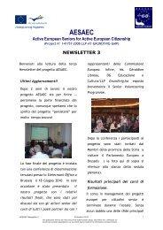 newsletter 3 - AESAEC