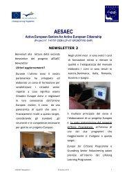 newsletter 2 - AESAEC