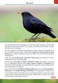 Wildvogel-Fibel - Seite 3