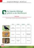 Wildvogel-Fibel - Seite 6