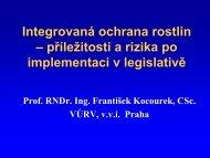 prof. RNDr. Ing. F. Kocourek, CSc.