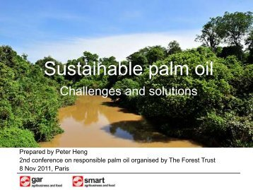 Sustainable palm oil - Golden Agri-Resources