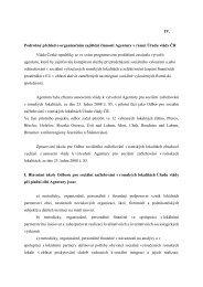 Pøíloha k Usnesení Vlády ÈR ze dne 9. èervna 2008 è ... - Vláda ČR