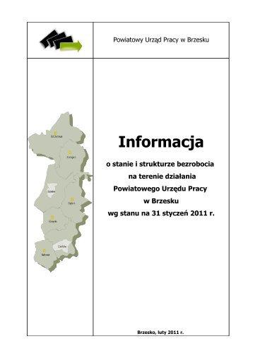 Informacja o sytuacji na rynku pracy - styczeń 2011 r.