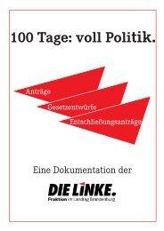 100-Tage-Bilanz - Die Linke. - Land Brandenburg