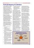 Kultur PIXI nr. 1 - Kulturplanlægning - Page 5