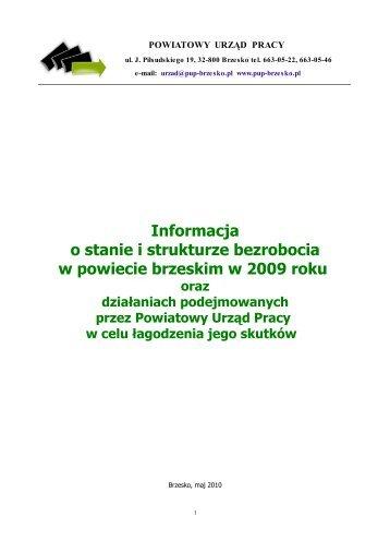 Informacja o sytuacji na rynku pracy za 2009 r. - Brzesko, Urząd ...