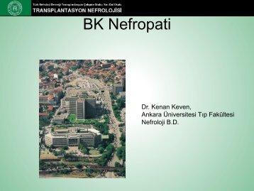 BK Nefropati