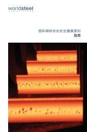国际钢铁协会安全健康原则指南 - World Steel Association
