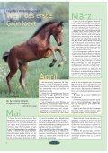 Wollen Sie mit Pferden Geld verdienen? - Euroriding - Page 4