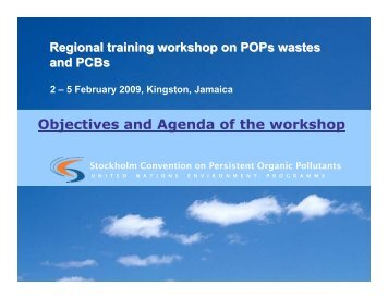 Objectives and Agenda of the workshop - Stockholm Convention on ...