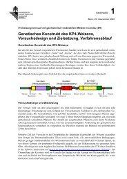 Faktenblatt 1 - Kurt Schweizer