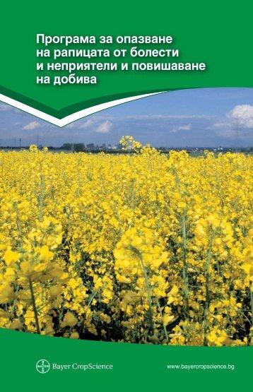 40 - Bayer CropScience