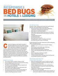 Response To Bed Bugs In Hotels - Rodent Removal Chicago