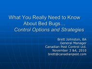 Bed Bug Control & Prevention