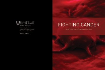 FIGHTING CANCER - College of Science - University of Notre Dame
