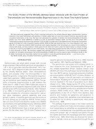 Morin et al 2000 - Virology.pdf