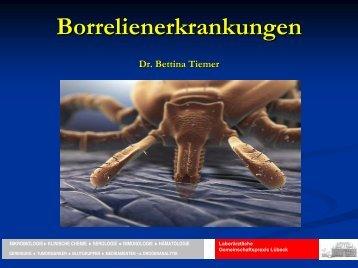 Borrelienerkrankungen - Laborärztliche Gemeinschaftspraxis Lübeck