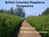 British Columbia Perspective