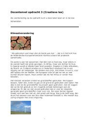 Docentenvel opdracht 3 (Creatieve les) - Europa morgen