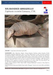 Smith P 2007 - FAUNA Paraguay Handbook of the