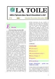 La Toile n°11 - IED afrique