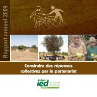 Rapport annuel 2009 - IED afrique