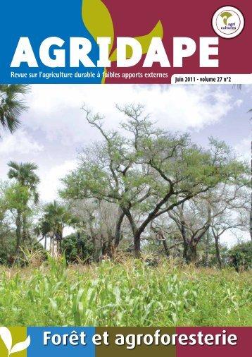 Forêt et agroforesterie - IED afrique
