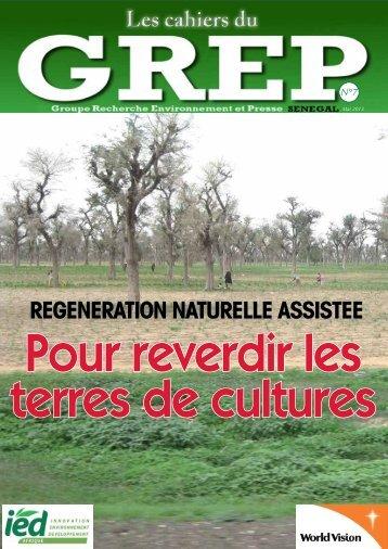 Cahiers du GREP N°7 Spécial RNA - IED afrique
