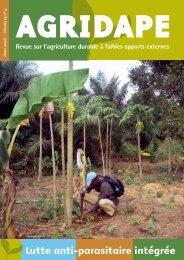 Volume 23, n°4 - IED afrique