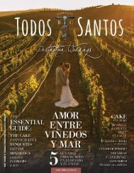 Todos Santos- Destination Weddings 2015