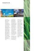 Timing Belt & Kits Catalogue 2008/2009 (pdf 2MB ... - Bosch Australia - Page 2