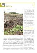 Foncier et Agriculture Familiale - AgriCultures Network - Page 4