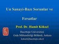 Prof. Dr. Hamit Köksel