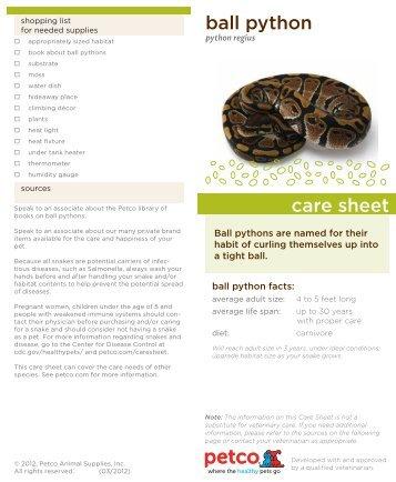 rabbit care sheet pdf petco petco   rabbit care sheet pdf petco