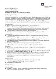 Bæredygtig Transport.pdf - BedreInnovation.dk