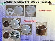 Télécharger le document au format Pdf. - INRA Montpellier