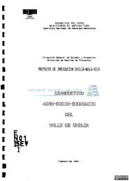 Diagnóstico agro-socio-económico del valle de Chilca... - Autoridad ...