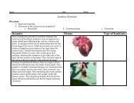 Symbiosis Worksheet - nnhsbergbio