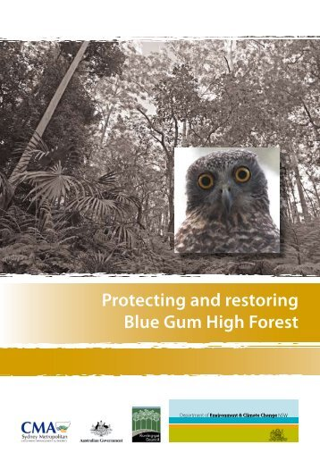Protecting and restoring Blue Gum High Forest - Department of ...