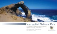 Sperrgebiet National Park - NamibWeb.com