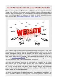 What Do Advertisers Do To Provide Assurance Web Site Web Traffic?