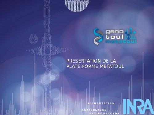 PRESENTATION DE LA PLATE-FORME METATOUL