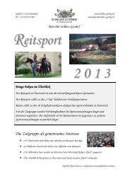 Sponsorenflyer 2013.pdf