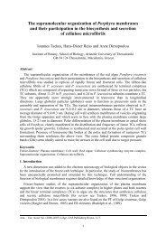 The supramolecular organization of Porphyra membranes and their ...