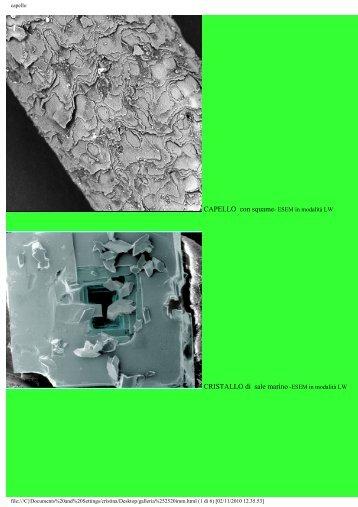 CRISTALLO di sale marino -ESEM in modalità LW - Ce.M.E.