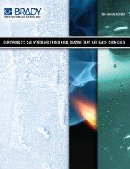 2009 Annual Report - Brady Corporation